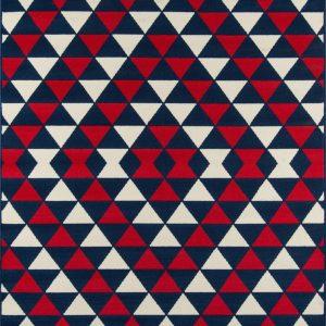 BAJA-05 Red